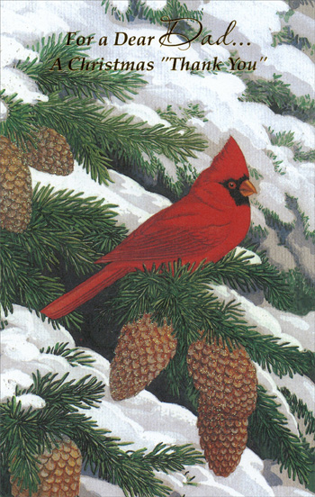 Cardinal on Branch: Dad (1 card/1 envelope) - Christmas Card - FRONT: For a Dear Dad� A Christmas Thank You  INSIDE: Remembering so many warm and thoughtful things you've done� to bring your family happiness all year� And wanting to say �thank you, Dad� for each and every one� with special love because you're very dear. Merry Christmas