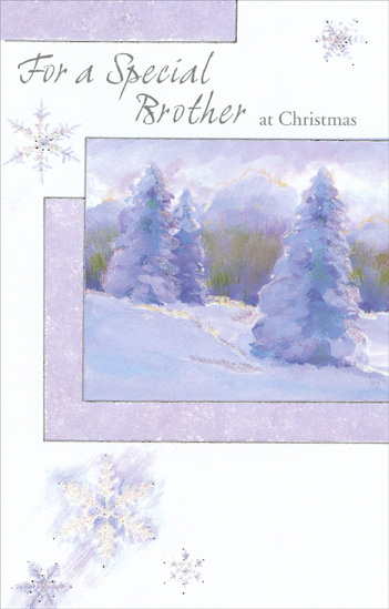 Snow Covered Trees: Brother (1 card/1 envelope) Christmas Card - FRONT: For a Special Brother at Christmas  INSIDE: As the Christmas season arrives, it brings warm memories Of all the special times we've shared because we're family, And every year it means even more having a brother like you To care about and count on as a friend a lifetime through. Merry Christmas