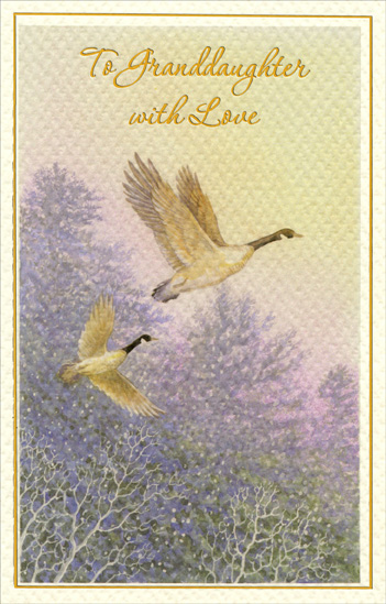 Pair of Geese: Granddaughter (1 card/1 envelope) Christmas Card - FRONT: To Granddaughter with Love  INSIDE: Granddaughter, Christmas dreams are meant to come true And this one wishes only the most wonderful for you. Merry Christmas