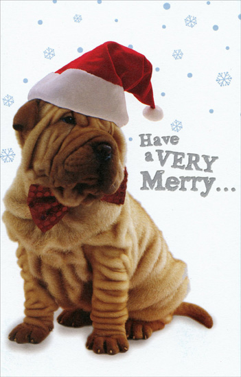 Shar Pei Santa (1 card/1 envelope) Christmas Card - FRONT: Have a Very Merry�  INSIDE: Christmas! Woof! Woof!
