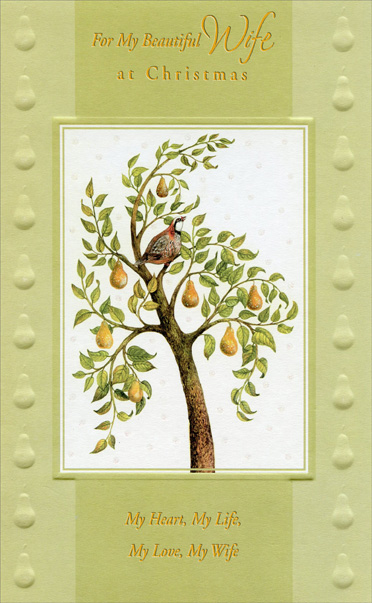 Partridge in Pear Tree: Wife (1 card/1 envelope) - Christmas Card - FRONT: For My Beautiful Wife at Christmas - My Heart, My Life, My Love, My Wife  INSIDE: You took my heart and filled it with your love and now I have everything I've ever been dreaming of. Merry Christmas with All My Love