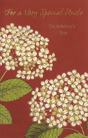 White Flowers on Maroon: Uncle (1 card/1 envelope) - Valentine's Day Card - FRONT: For a Very Special Uncle on Valentine's Day  INSIDE: Just want to tell you in a Valentine way, there aren't many uncles as special as you� And to send you some wishes for life's nicest things with warmth and affection all the year through. Happy Valentine's Day