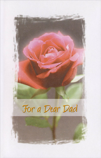 Dew Coated Rose: Dad (1 card/1 envelope) Freedom Greetings Valentine's Day Card - FRONT: For a Dear Dad  INSIDE: Wishing you exactly what you are wishing for� Hope everything's �coming up roses� for you - no one deserves it more! Happy Valentine's Day