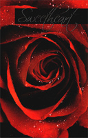 Extra Large Red Rose: Sweetheart (1 card/1 envelope) - Valentine's Day Card