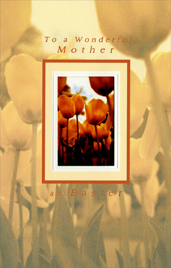 Orange Tulips in Die Cut Window: Mother (1 card/1 envelope) Easter Card - FRONT: To a Wonderful Mother  INSIDE: You've been the heart of so many happy times, and you're wished a dream-come-true for everyone of them… You've touched so many lives with your thoughtful ways, and you're loved for every one of them… May Easter and Spring be specially bright for a specially wonderful mother. Happy Easter
