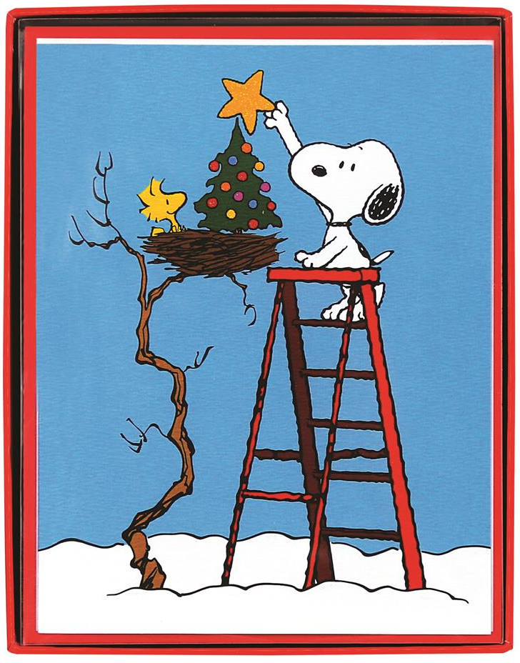 Woodstock And Snoopy Put Star On Tree Box Of 15 Peanuts Christmas