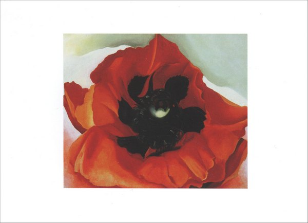 Georgia O'Keeffe Poppy (1 card/1 envelope) Blank Card - FRONT: No Text  INSIDE: Blank Inside
