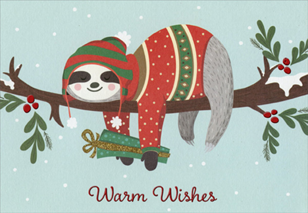 Cute Christmas Cards.Cute Sloth On Tree Branch Box Of 15 Christmas Cards By