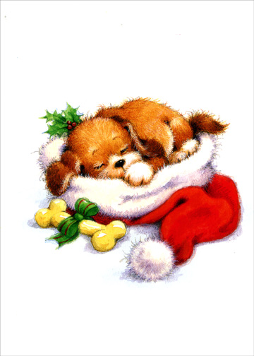Puppy Sleeping in Santa Hat (1 card/1 envelope) Christmas Card - FRONT: No Text  INSIDE: May all your Christmas dreams come true!