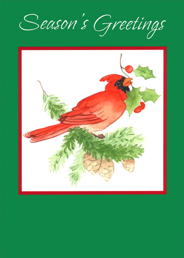 cardinal with green border holiday card