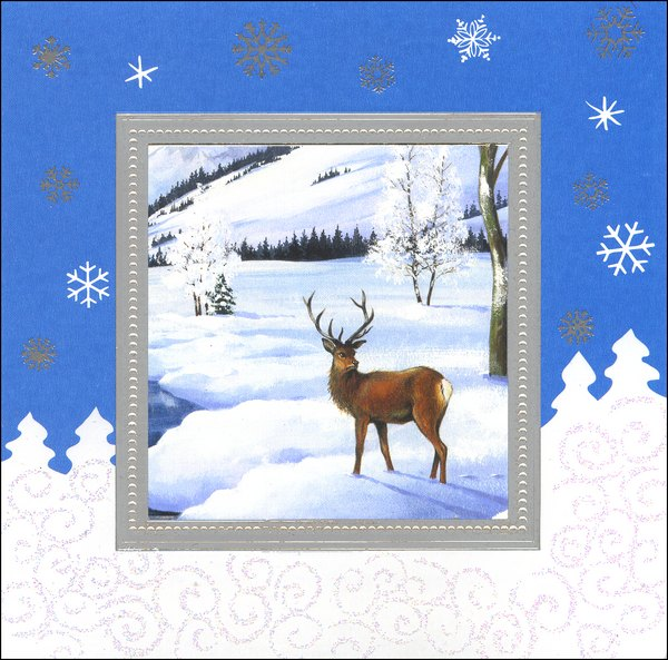 Deer in Silver Border (1 card/1 envelope) - Holiday Card - FRONT: No Text  INSIDE: Wishing you all the beauty of the season.