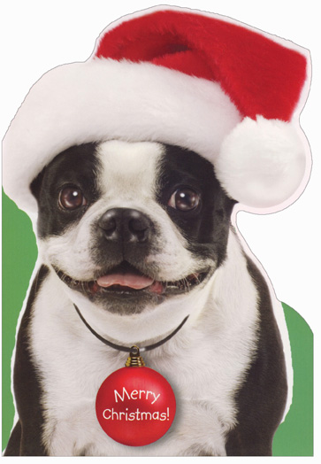 French Bulldog Die Cut (1 card/1 envelope) Image Arts Dog Christmas Card - FRONT: Merry Christmas!  INSIDE: Hope Christmas brings a smile to your face!