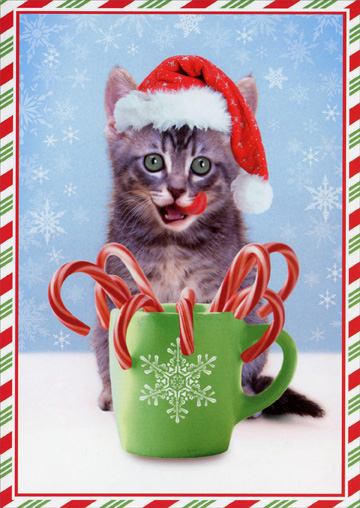 Kitten with Candy Canes (1 card/1 envelope) - Christmas Card  INSIDE: Celebrate Christmas in style!