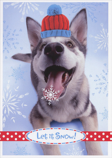 Husky with Snowflake on Tongue (18 cards/18 envelopes) - Boxed Holiday Cards - FRONT: Let it Snow!  INSIDE: Wishing you the happiest of holidays!