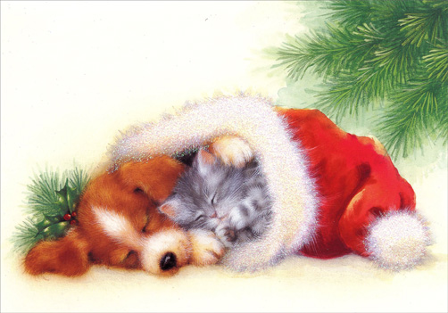 Cat & Dog in Santa Hat (1 card/1 envelope) Image Arts Christmas Card  INSIDE: May all your Christmas dreams come true!