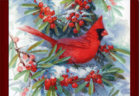 Cardinal in Branches (1 card/1 envelope) - Christmas Card  INSIDE: Thinking of you and wishing you a wonderful holiday season.