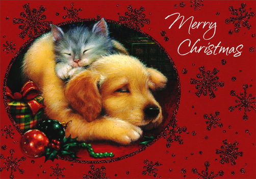 Sleeping Kitten and Puppy (1 card/1 envelope) Image Arts Cat Christmas Card - FRONT: Merry Christmas  INSIDE: May all your Christmas dreams come true!