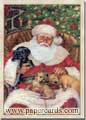 Nap Time (1 card/1 envelope) Dog Christmas Card