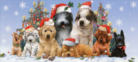 Puppies in Santa Hats Box of 14 Long Glitter Dog Christmas Cards