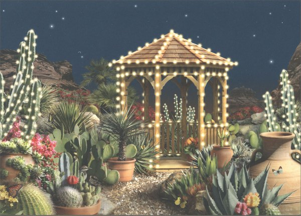 Holiday Oasis (18 cards & 18 envelopes) Alan Giana Western Boxed Holiday Cards - FRONT: No Text  INSIDE: Warmest thoughts and best wishes for a wonderful holiday season