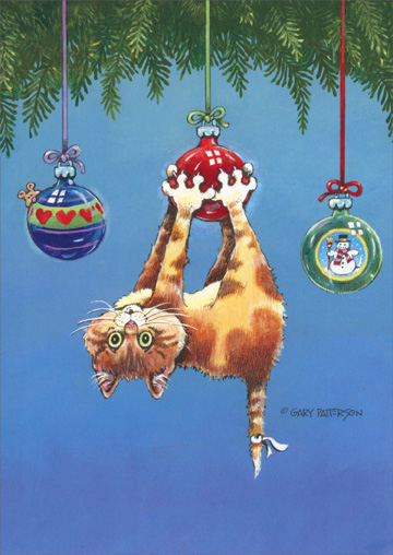 What Now Cat (1 card/1 envelope) LPG Funny Cat Christmas Card - FRONT: No Text  INSIDE: Wishing you a Christmas filled with happy surprises and lots of good fun!