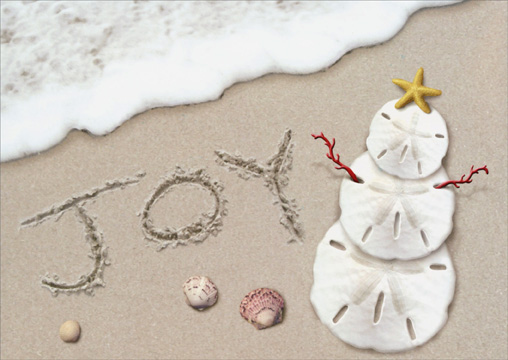Joy Surf (1 card/1 envelope) - Holiday Card - FRONT: Joy  INSIDE: Joy to your world..