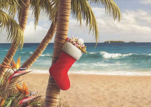 Stocking hung from palm tree alan giana tropical holiday card