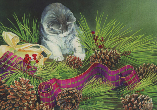 Kitten Playing with Pine Cone (16 cards & 16 envelopes) Cat Boxed Christmas Cards  INSIDE: Wishing you a Christmas filled with special moments and happy times