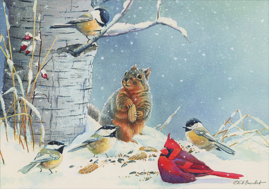 Squirrel & Birds (1 card/1 envelope) Christmas Card  INSIDE: Season's Greetings and Best Wishes for the New Year