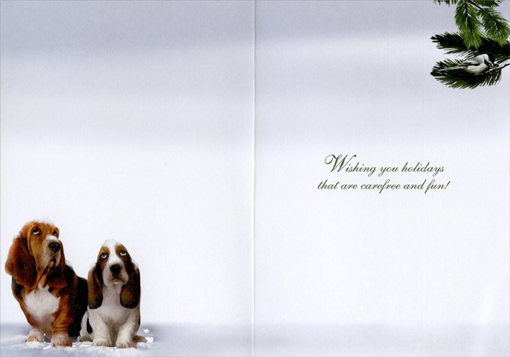 Bassetts & Cat (1 card/1 envelope) - Christmas Card  INSIDE: Wishing you holidays that are carefree and fun!