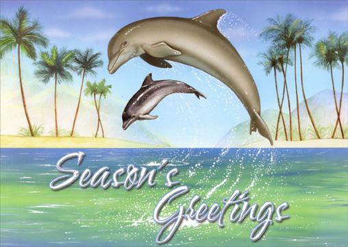 Holiday Dolphins (18 cards & 18 envelopes) Warm Weather Boxed Christmas Cards - FRONT: Season's Greetings  INSIDE: Wishing you a holiday season filled with serenity and peace