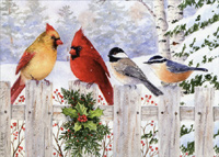 Birds on White Fence Christmas Card
