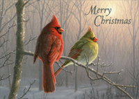 Cardinals on Branch (1 card/1 envelope) - Christmas Card - FRONT: Merry Christmas  INSIDE: May the beauty of the season bring you happiness and peace.