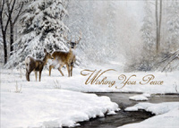 Dear and Stream in Winter (18 cards/18 envelopes) - Boxed Christmas Cards - FRONT: Wishing You Peace  INSIDE: Wishing you Peace and Joy this Christmas and always