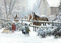 Boy and Girl Feeding Horses Christmas Card