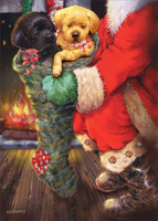 Fireside Puppies in Stocking Box of 12 Christmas Cards