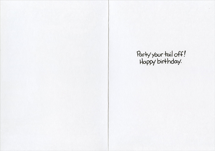 Wagra (1 card/1 envelope) - Birthday Card - FRONT: Well, you're excitable today�  INSIDE: Party your tail off!  Happy birthday.