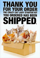 Crazy Cat Lady Starter Kit (1 card/1 envelope) - Birthday Card - FRONT: Thank you for your order - The crazy cat lady starter kit you ordered has been shipped.  INSIDE: It's your birthday? Go a little crazy!