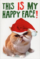 My Happy Face (1 card/1 envelope) Nobleworks Funny Cat Themed Christmas Card