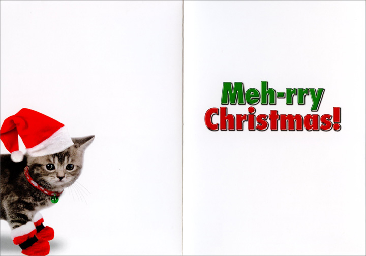 Meh-rry Christmas (12 cards/12 envelopes) Nobleworks Funny Cat Themed Boxed Christmas Cards - FRONT: Meh!  INSIDE: Meh-rry Christmas!