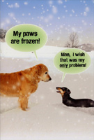 Paws are Frozen (1 card/1 envelope) - Christmas Card - FRONT: My paws are frozen! Man, I wish that was my only problem!  INSIDE: Warm wishes for a happy holiday.