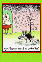 Dog Shorted Out Tree (1 card/1 envelope) - Christmas Card - FRONT: Agnes! The dog's shorted out another tree!  INSIDE: Happee Holidays!