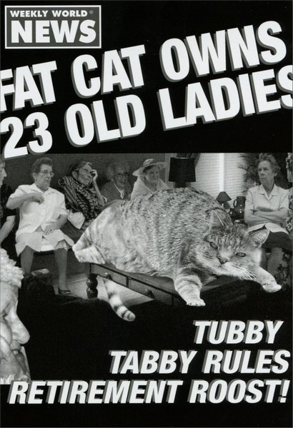 23 Old Ladies (1 card/1 envelope) Nobleworks Funny Birthday Card - FRONT: Weekly world news. Fat cat owns 23 old ladies. Tubby tabby rules retirement roost!  INSIDE: It's your birthday; the cat's out of the bag! Happy Birthday!