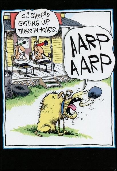AARP Bark (1 card/1 envelope) Nobleworks Funny McCoy Bros Birthday Card - FRONT: Ol'Shep's getting up there in years. AARP AARP  INSIDE: Happy Birthday. (Hope you didn't get the card yet.)