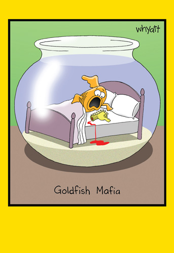 Goldfish Mafia (1 card/1 envelope) Nobleworks Funny Tim Whyatt Congratulations Card - FRONT: Goldfish Mafia  INSIDE: Congratulations on getting ahead!