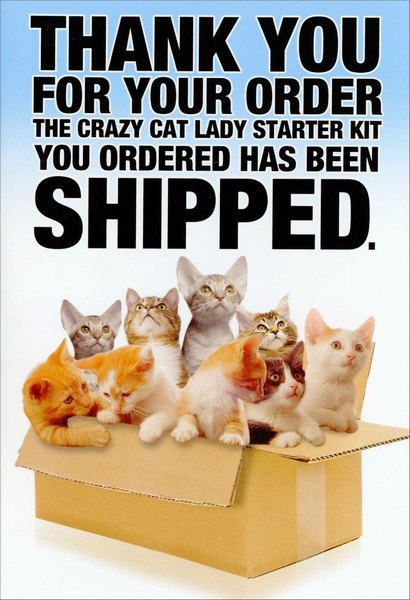 Crazy Cat Lady Starter Kit (1 card/1 envelope) Nobleworks Funny Birthday Card - FRONT: Thank you for your order - The crazy cat lady starter kit you ordered has been shipped.  INSIDE: It's your birthday? Go a little crazy!