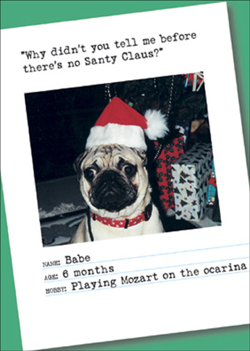 No Santa Claus (12 cards & 12 envelopes) Bad Dog Funny Boxed Christmas Cards - FRONT: �Why didn't you tell me before there's no Santy Claus?�  Name: Babe  Age: 6 months  Hobby: Playing Mozart on the ocarina  INSIDE: Merry Christmas!