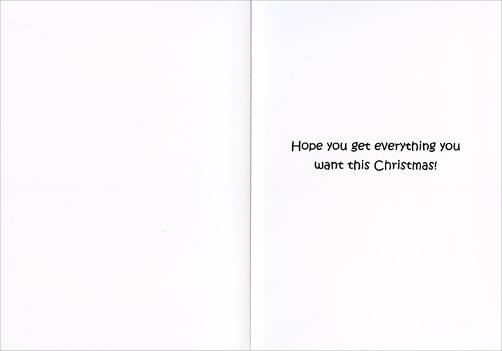 Fresh Out (1 card/1 envelope) Funny Christmas Card - FRONT: Sorry guys, we're fresh out of Playstations - This is all we've got left  INSIDE: Hope you get everything you want this Christmas!