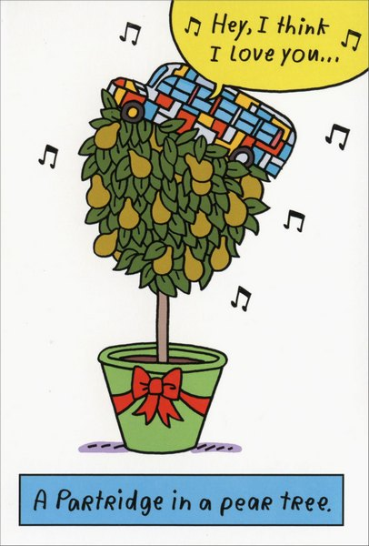 Partridge Pear Tree (12 cards/12 envelopes) - Boxed Christmas Cards - FRONT: A Partridge in a pear tree. Hey, I think I love you..  INSIDE: It's Christmas - c'mon get happy!