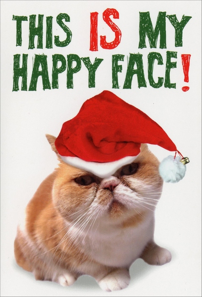 My Happy Face (12 cards/12 envelopes) Nobleworks Funny Cat Themed Boxed Christmas Cards - FRONT: This IS my happy face!  INSIDE: You'd better not pout! Merry Christmas.